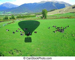 Hot air balloon shadow mid-air - Hot air balloon shadow from...