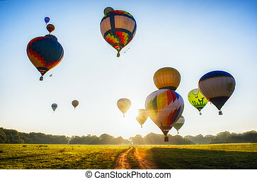 Hot-air balloons over field - A lot of balloons start they ...