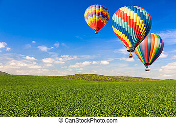 Hot Air Balloons Over Lush Green Landscape and Blue Sky