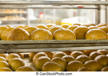 Hot Baked Bread in Kitchen