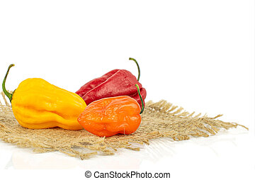 Hot chili pepper isolated on white