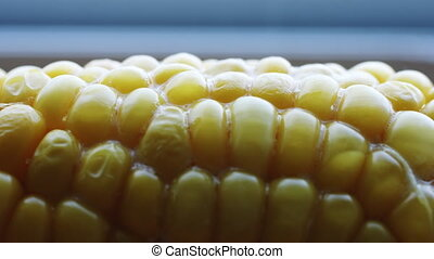 Hot cob of boiled corn with butter. - Sprinkle the salt on...