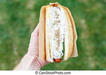 Hot dog in hand on a green background