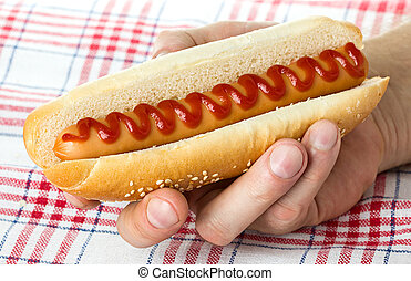 hot dog in hand