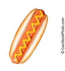 hot dog on white background