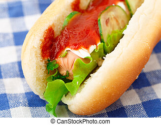 Hot dog with ketchup and cucumbers