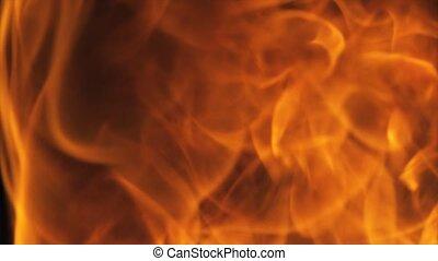 Hot Fire Burning Black Background - 4k Hot Fire burning...