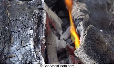 Hot red charcoals in bonefire. fire wood charcoal