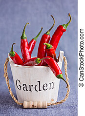 Hot red chili peppers in wooden mini backet with word Garden on bluish background, vertical composition