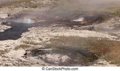 Hot Springs Yellowstone - a gurgling hot spring in the...