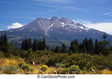 Hot Summer Day Weed California Base Mount Shasta Mountain - ...