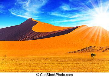 Hot sun of the Namib desert