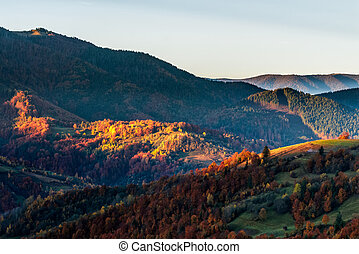 hot sunrise in Carpathian mountains - golden hot sunrise in...