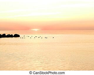 Hot Sunset background