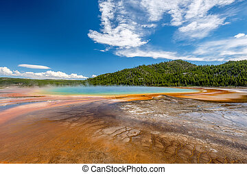 Grand Prismatic Spring in Yellowstone - Hot thermal spring...