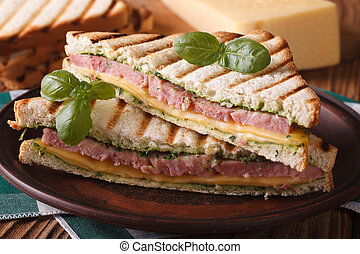 Hot toast with ham, cheese closeup on plate. horizontal