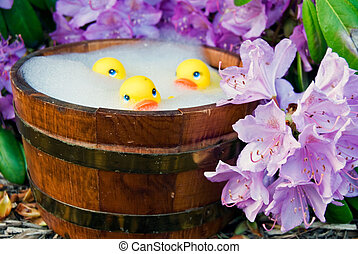 Hot Tubbing - Yellow rubber ducks in tub with azaleas.