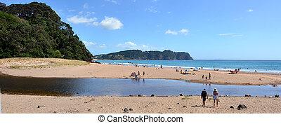 Hot Water Bech - New Zealand - WHITIANGA, NZL - Jan 20 2015:...