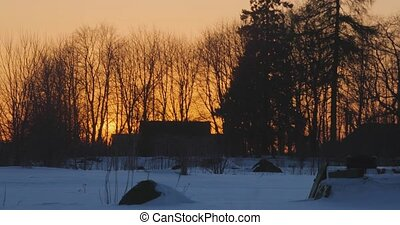 hot winter sunset in the forest