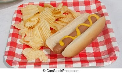 Hotdog and Chips on a checker board plate