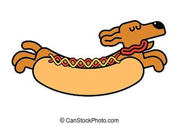 hotdog., chouchou, chien, illustration, chaud, vecteur, animal, dachshund.