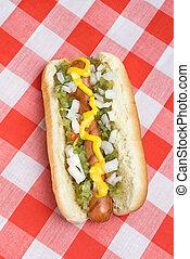 Hotdog on picnic table