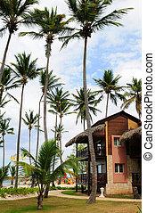hotel, -ban, tropikus, erőforrás