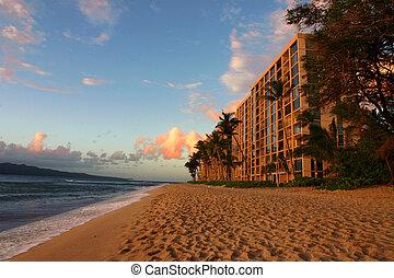 Hotel Beach