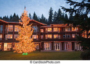 Hotel during Christmas - Hotel exterior and Christmas tree