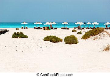 hotel, uae, sunbeds, abu dhabi, playa, paraguas, lujo
