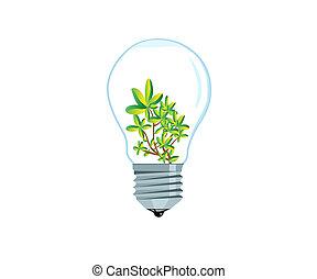 Hothouse plant - Tiny green bush inside an electrical bulb