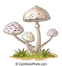 houba, do, ta, pastvina