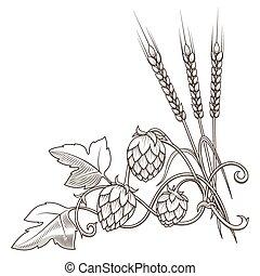 houblon, vecteur, ornement, illustration