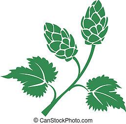 houblon, vecteur, vert, icône