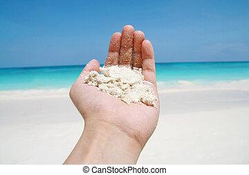 houden, hand, zand strand