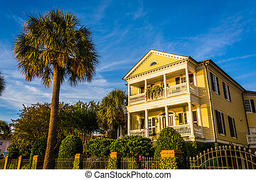 House and palm tree along Murray Drive in Charleston, South ...