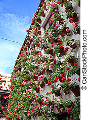 House decorated with flowerpots in Cordoba, Andalusia Spain
