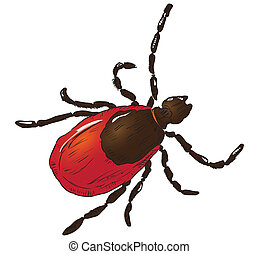 House dust mite allergy. Vector illustration done in manual ...