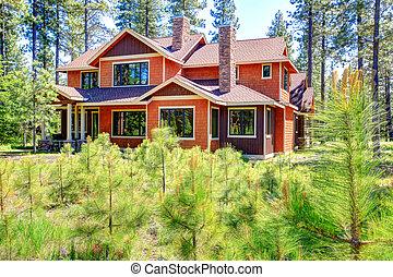 House exterior. Backyard view