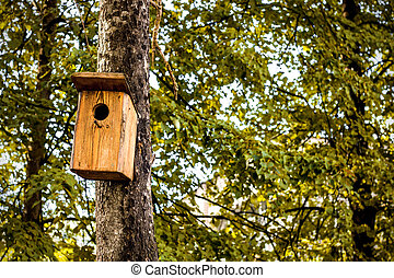 House for birds on a tree in the park