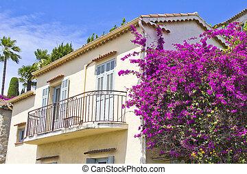House full of flowers