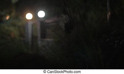 House gates with lanterns at night