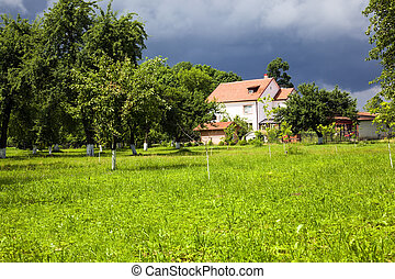 house in park