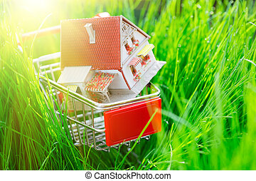 House in shopping cart