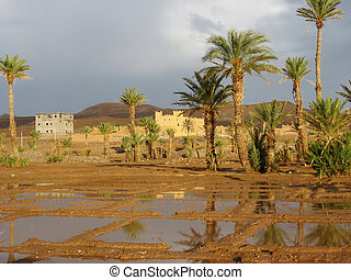 House in the desert with rain