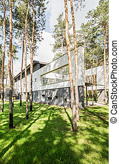 Close to nature- modern concrete house in the forest
