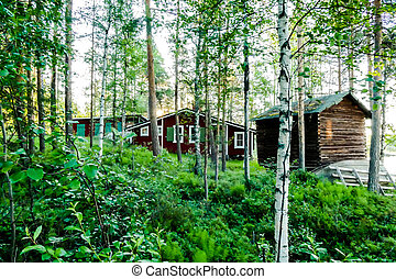 house in the forest, beautiful photo digital picture