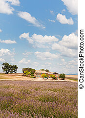 House in the French Provence