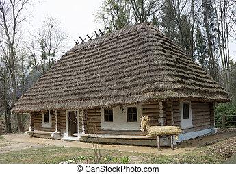 House in the park Shevchenko
