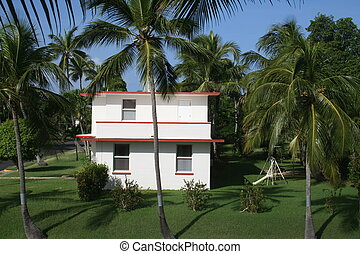 House in the Tropics - Home with green grass lawn and palm...